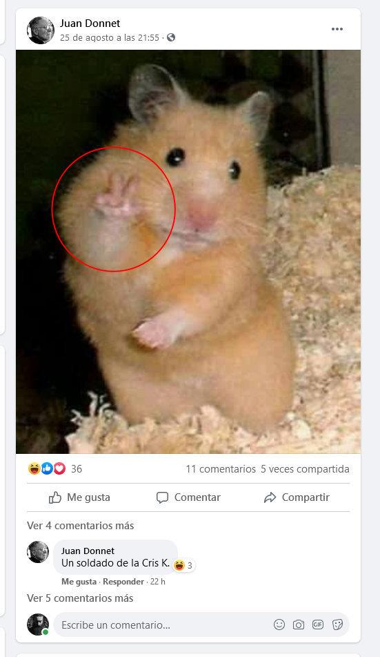 Juan Donnet, Facebook (masón, lobo, finjidor, joker) (agosto 2021) c